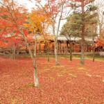 【寺・神社 Advent Calendar 2015】大好きな京都の寺社を四季別に。