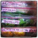 食材の保存方法・冷凍保存について