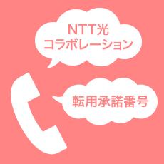 NTT光コラボレーション事業者からの勧誘電話