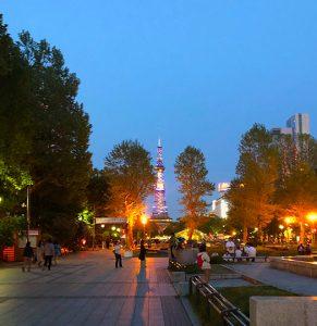 札幌の大通公園から見たテレビ塔